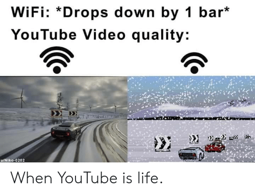 Is Life: WiFi: *Drops down by 1 bar*  YouTube Video quality: When YouTube is life.
