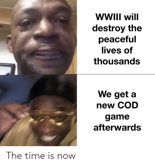 destroy: WII will  destroy the  peaceful  lives of  thousands  We get a  new COD  game  afterwards The time is now