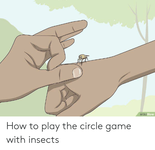 The Circle Game: wiki How How to play the circle game with insects