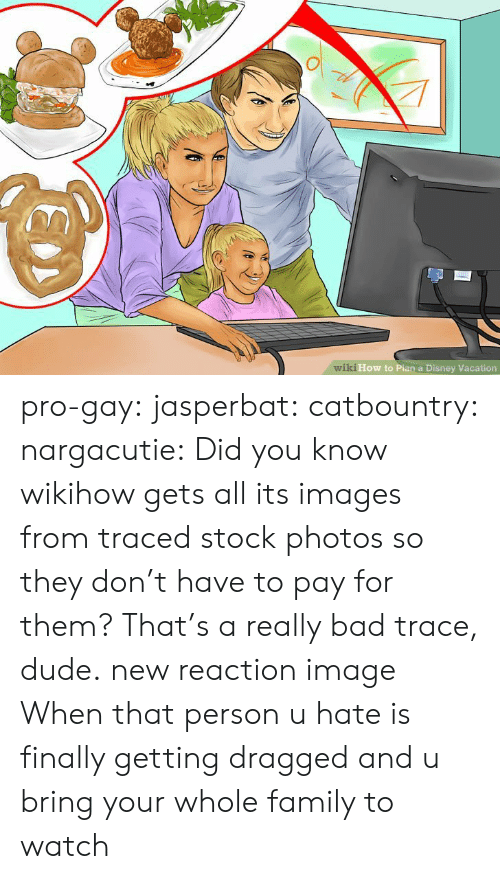 Tracing: wiki How to Pian a Disney Vacation pro-gay:  jasperbat:  catbountry:  nargacutie:  Did you know wikihow gets all its images from traced stock photos so they don't have to pay for them?  That's a really bad trace, dude.   new reaction image  When that person u hate is finally getting dragged and u bring your whole family to watch
