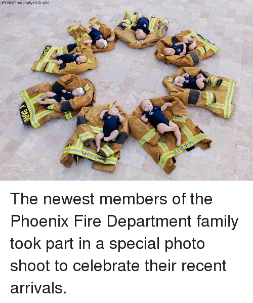 photo shoot: Wildbird Photography via Storyful The newest members of the Phoenix Fire Department family took part in a special photo shoot to celebrate their recent arrivals.