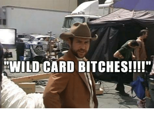 Memes, 🤖, and Wildcard: WILDCARD BITCHES!!!!""
