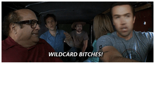 Memes, 🤖, and Wildcard: WILDCARD BITCHES!