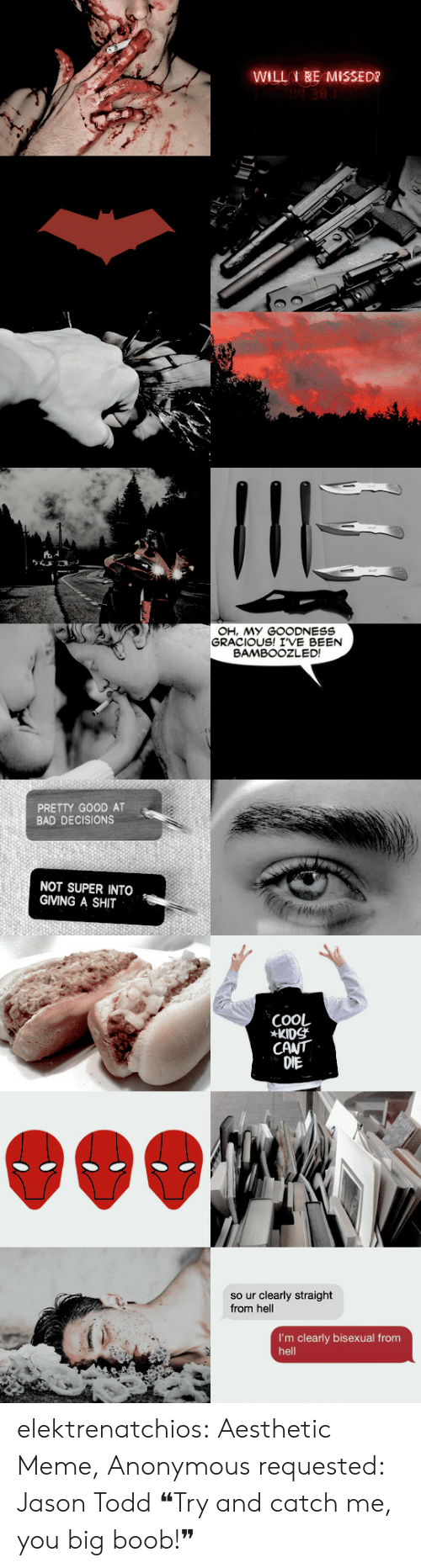 Bad Decisions: WILL BE MISSED?   OH, MY GOODNESS  GRACIOUS! IVE BEEN  BAMBOOZLED!  PRETTY GOOD AT  BAD DECISIONS  NOT SUPER INTO  GIVING A SHIT   COOL  KIDS  CANT  DIE  so ur clearly straight  from hell  I'm clearly bisexual from  hell elektrenatchios:  Aesthetic Meme, Anonymous requested: Jason Todd   ❝Try and catch me, you big boob!❞