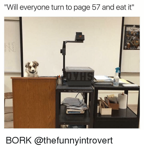 """Borks: Will everyone turn to page 57 and eat it""""  IG: The Funnylntrovert BORK @thefunnyintrovert"""