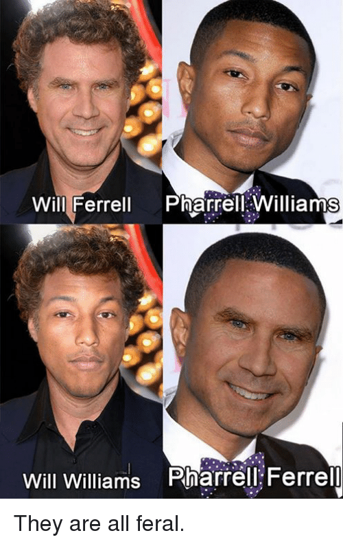Pharrell Williams: Will Ferrell Pharrell Williams  Will Williams Pharrell Ferrel They are all feral.