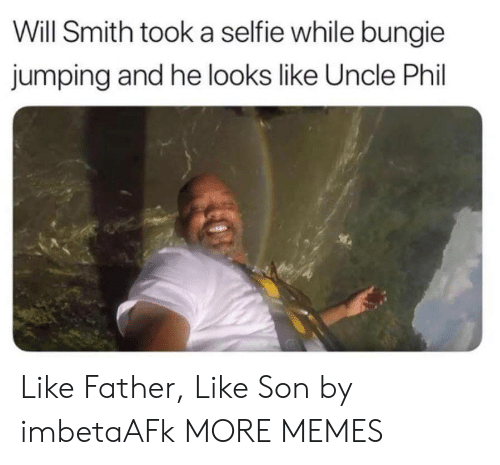 bungie: Will Smith took a selfie while bungie  jumping and he looks like Uncle Phil Like Father, Like Son by imbetaAFk MORE MEMES