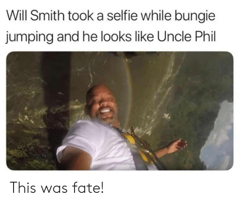 bungie: Will Smith took a selfie while bungie  jumping and he looks like Uncle Phil This was fate!