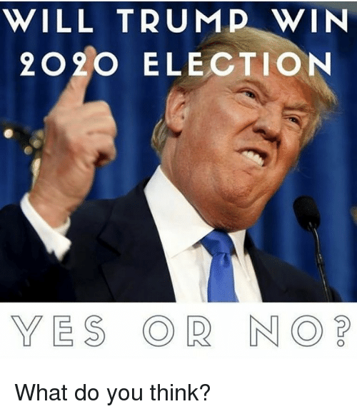 Trump Win: WILL TRUMP WIN  2020 ELECTION  YES OR NO What do you think?
