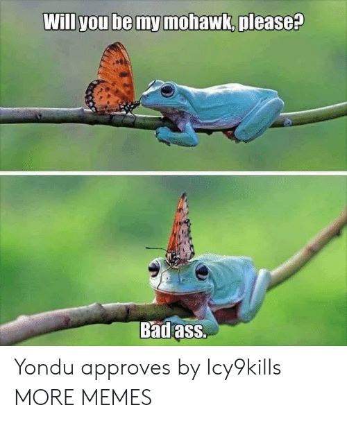 yondu: Will you be my mohawk, please?  Badass. Yondu approves by Icy9kills MORE MEMES