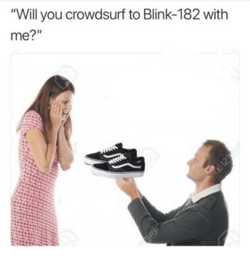 """Blink 182: """"Will you crowdsurf to Blink-182 with  me?"""""""