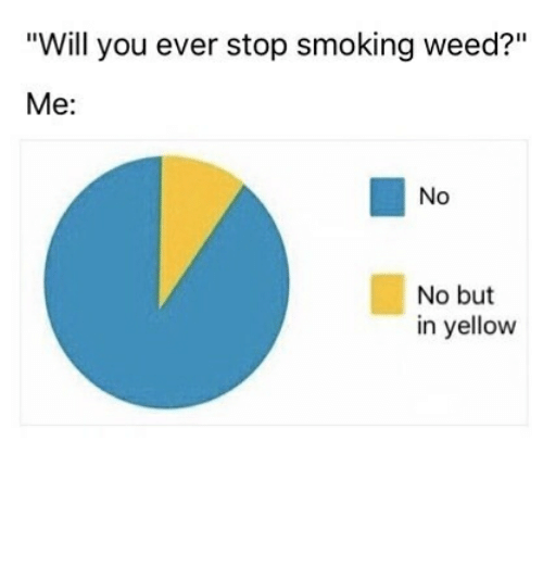 """Stop Smoking: """"Will you ever stop smoking weed?""""  Me:  No  No but  in yellow"""