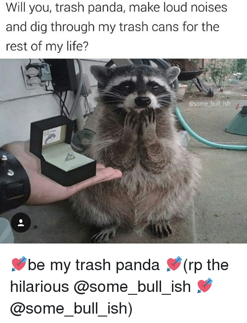 Memes, 🤖, and Dig: Will you, trash panda, make loud noises  and dig through my trash cans for the  rest of my life?  @some bull ish 💘be my trash panda 💘(rp the hilarious @some_bull_ish 💘@some_bull_ish)