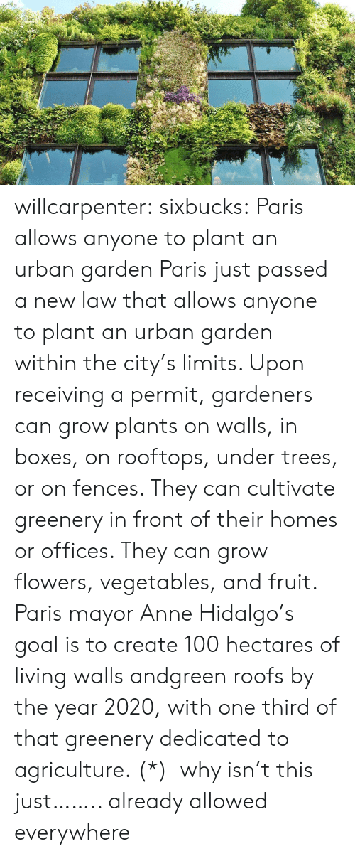 Fences: willcarpenter:  sixbucks:    Paris allows anyone to plant an urban garden     Paris just passed a new law that allows anyone to plant an urban garden within the city's limits. Upon receiving a permit, gardeners can grow plants on walls, in boxes, on rooftops, under trees, or on fences. They can cultivate greenery in front of their homes or offices. They can grow flowers, vegetables, and fruit. Paris mayor Anne Hidalgo's goal is to create 100 hectares of living walls andgreen roofs by the year 2020, with one third of that greenery dedicated to agriculture.    (*)  why isn't this just…….. already allowed everywhere