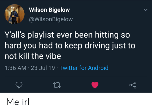 The Vibe: Wilson Bigelow  @WilsonBigelow  Y'all's playlist ever been hitting so  hard you had to keep driving just  not kill the vibe  1:36 AM 23 Jul 19 Twitter for Android Me irl
