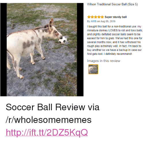 """aws: Wilson Traditional Soccer Ball (Size 5)  Super sturdy ball  By AWS on Aug 05, 2016  I bought this ball for a non-traditional use: my  miniature donkey LOVES to roll and toss balls,  and slightly deflated soccer balls seem to be  easiest for him to grab. We've had this one for  several months now, and it has withstood his  rough play extremely well. In fact, I'm back to  buy another so we have a backup in case our  first gets lost. I definitely recommend!  Images in this review <p>Soccer Ball Review via /r/wholesomememes <a href=""""http://ift.tt/2DZ5KqQ"""">http://ift.tt/2DZ5KqQ</a></p>"""
