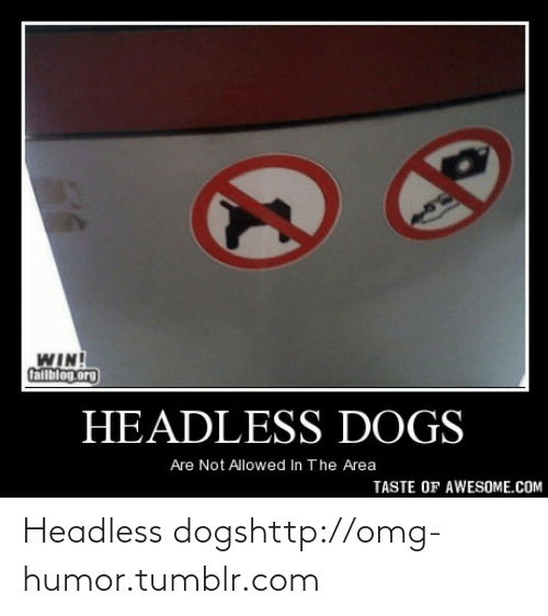 Dogs: WIN!  Callblog.org  HEADLESS DOGS  Are Not Allowed In The Area  TASTE OF AWESOME.COM Headless dogshttp://omg-humor.tumblr.com