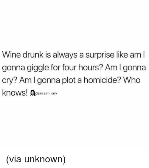 homicide: Wine drunk is always a surprise like am l  gonna giggle for four hours? Am I gonna  cry? Amlgonna plot a homicide? Who  knows! Aesarcasm ny (via unknown)