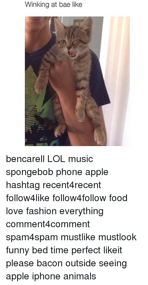 Animals, Anime, and Apple: Winking at bae like bencarell LOL music spongebob phone apple hashtag recent4recent follow4like follow4follow food love fashion everything comment4comment spam4spam mustlike mustlook funny bed time perfect likeit please bacon outside seeing apple iphone animals