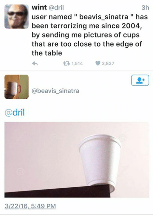 Beavies: wint  adril  3h  user named beavis sinatra has  been terrorizing me since 2004,  by sending me pictures of cups  that are too close to the edge of  the table  1,514 3,837  t beavis sinatra  dril  3/22/16, 5:49 PM