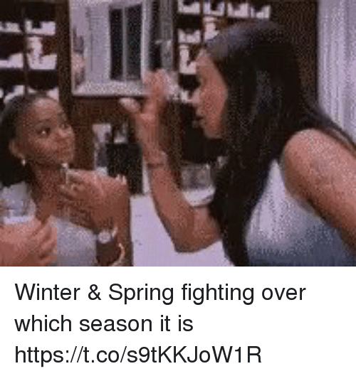 Winter, Spring, and Girl Memes: Winter & Spring fighting over which season it is https://t.co/s9tKKJoW1R