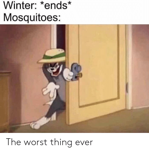 worst thing ever: Winter: *ends  Mosquitoes: The worst thing ever