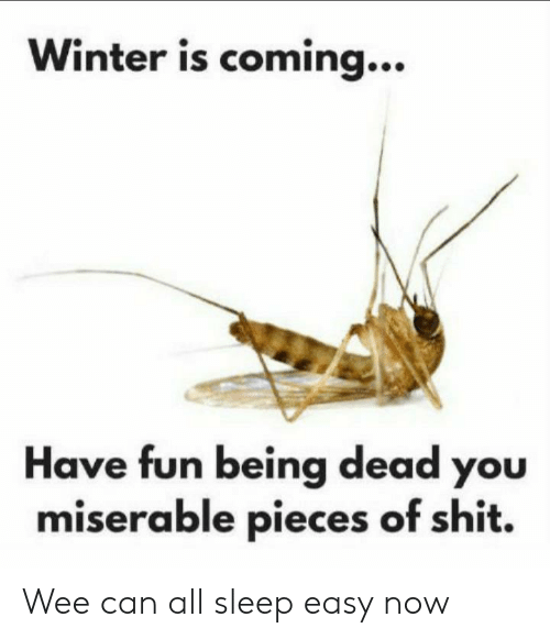 Pieces Of Shit: Winter is coming...  Have fun being dead you  miserable pieces of shit. Wee can all sleep easy now