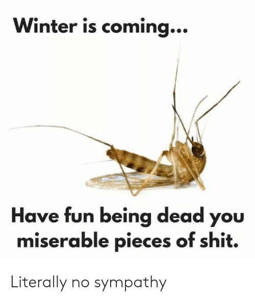 Pieces Of Shit: Winter is coming...  Have fun being dead you  miserable pieces of shit. Literally no sympathy