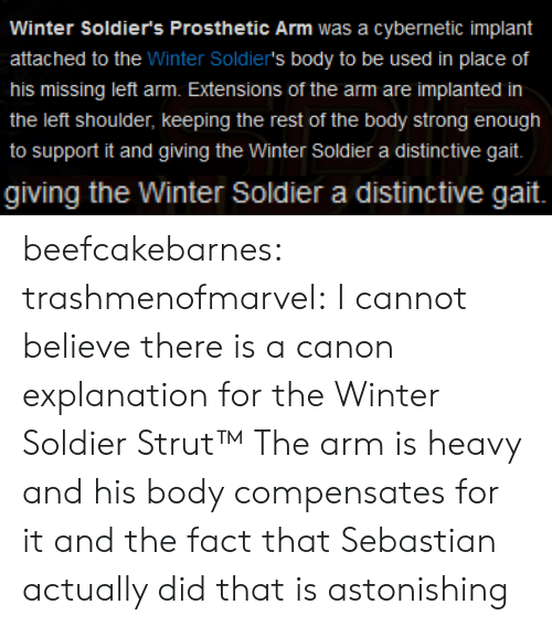 sebastian: Winter Soldier's Prosthetic Arm was a cybernetic implant  attached to the Winter Soldier's body to be used in place of  his missing left arm. Extensions of the arm are implanted in  the left shoulder, keeping the rest of the body strong enough  to support it and giving the Winter Soldier a distinctive gait.   giving the Winter Soldier a distinctive gait. beefcakebarnes: trashmenofmarvel:   I cannot believe there is a canon explanation for the Winter Soldier Strut™   The arm is heavy and his body compensates for it and the fact that Sebastian actually did that is astonishing