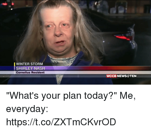 """winter storm: WINTER STORM  SHIRLEY NASH  Cornelius Resident  WCCB NEWS@TEN """"What's your plan today?""""  Me, everyday: https://t.co/ZXTmCKvrOD"""