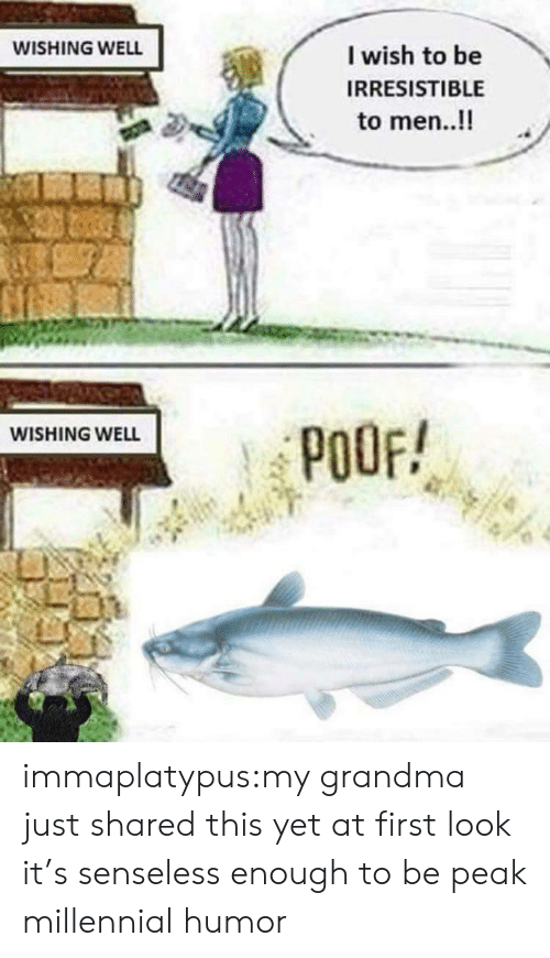 senseless: WISHING WELL  I wish to be  IRRESISTIBLE  to men..!!  WISHING WELL  POOF! immaplatypus:my grandma just shared this yet at first look it's senseless enough to be peak millennial humor