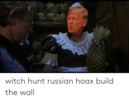 build-the-wall: witch hunt russian hoax build the wall