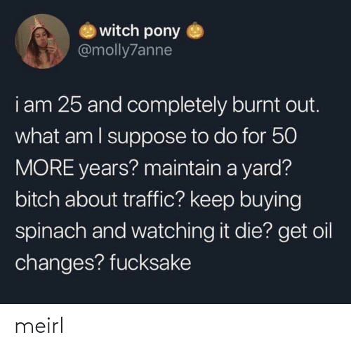burnt out: witch pony  @molly7anne  i am 25 and completely burnt out.  what am I suppose to do for 50  MORE years? maintain a yard?  bitch about traffic? keep buying  spinach and watching it die? get oil  changes? fucksake meirl