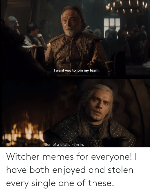 Enjoyed: Witcher memes for everyone! I have both enjoyed and stolen every single one of these.
