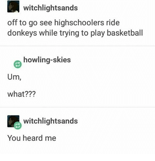 Memes, 🤖, and Play: witchlightsands  off to go see highschoolers ride  donkeys while trying to play basketball  howling-skies  Um  what?  witchlightsands  You heard me
