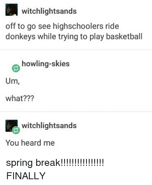 Memes, 🤖, and Play: witchlightsands  off to go see highschoolers ride  donkeys while trying to play basketball  howling-skies  Um,  what???  witchlightsands  You heard me spring break!!!!!!!!!!!!!!!! FINALLY