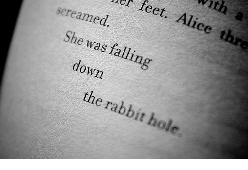 down the rabbit hole: With a  r feet. Alice thre  screamed  She was falling  down  the rabbit hole