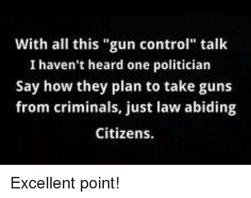 """Guns, Memes, and Control: With all this """"gun control"""" talk  I haven't heard one politician  Say how they plan to take guns  from criminals, just law abiding  Citizens. Excellent point!"""