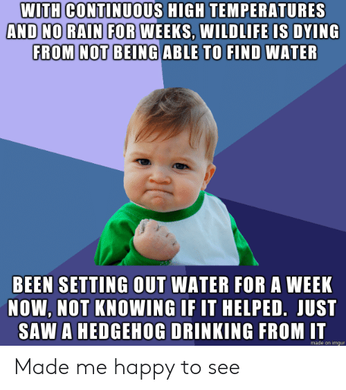 no rain: WITH CONTINUOUS HIGH TEMPERATURES  AND NO RAIN FOR WEEKS, WILDLIFE IS DYING  FROM NOT BEING ABLE TO FIND WATER  BEEN SETTING OUT WATER FOR A WEEK  NOW, NOT KNOWING IF IT HELPED. JUST  SAW A HEDGEHOG DRINKING FROM IT  made on imgur Made me happy to see