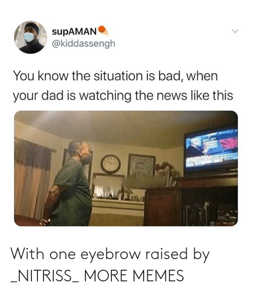 Raised: With one eyebrow raised by _NITRISS_ MORE MEMES