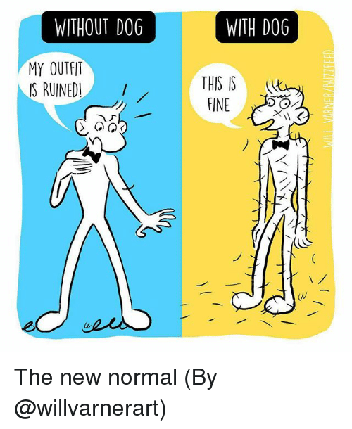 Memes, 🤖, and Dog: WITHOUT DOG  WITH DOG  MY OUTFIT  IS RUINED!  THIS IS  FINE  (v The new normal (By @willvarnerart)