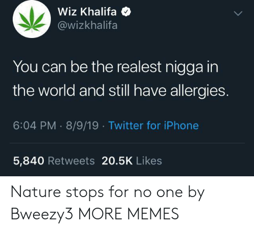 Wiz Khalifa: Wiz Khalifa  @wizkhalifa  You can be the realest nigga in  the world and still have allergies.  6:04 PM 8/9/19 Twitter for iPhone  5,840 Retweets 20.5K Likes Nature stops for no one by Bweezy3 MORE MEMES