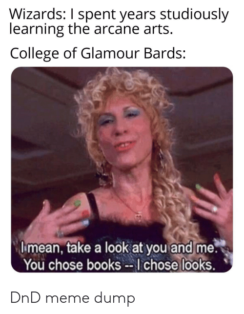 look at you: Wizards: I spent years studiously  learning the arcane arts.  College of Glamour Bards:  I mean, take a look at you and me.  You chose books --I chose looks. DnD meme dump