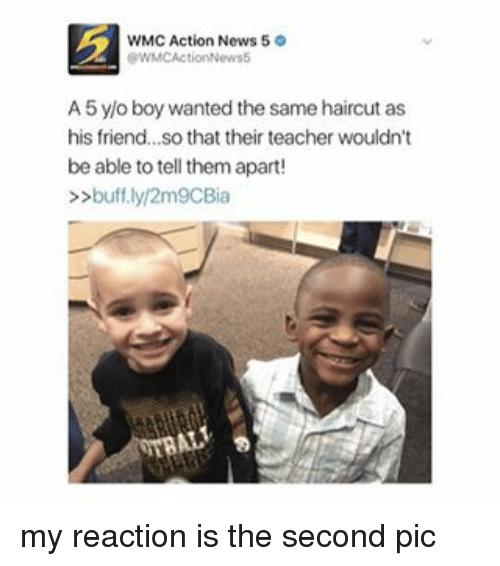Haircut, Haircuts, and Girl Memes: WMC Action News 5  tRWMCAction News5  A5 y/o boy wanted the same haircut as  his friend...so that their teacher wouldn't  be able to tell them apart!  buff.ly/2m9CBia my reaction is the second pic