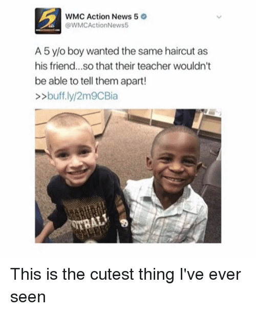 Haircut, Memes, and Haircuts: WMC Action News 5  @WMCActionNews5  A 5 y/o boy wanted the same haircut as  his friend...so that their teacher wouldn't  be able to tell them apart!  buff.ly/2m9CBia This is the cutest thing I've ever seen