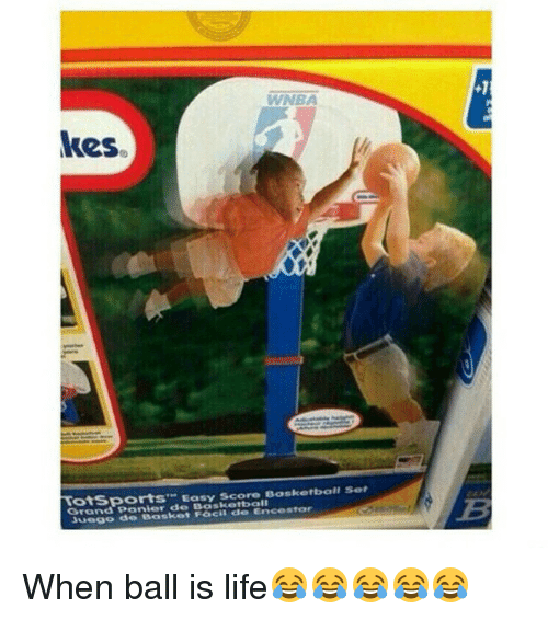 25 best memes about ball is life basketball and life ball is life baske - Panier de basket junior ...