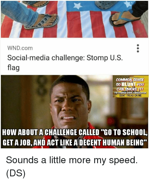 """Memes, School, and Social Media: WND com  Social media challenge: Stomp U.S.  flag  COMMON SENSE  so BLUNT VOU  CAN SMOKE  SENSE  THE CO  DONT TREAD ON ME  HOW ABOUT A CHALLENGE CALLED """"GO TO SCHOOL  GETAJOB, AND ACT LIKE A DECENT HUMAN BEING"""" Sounds a little more my speed. (DS)"""