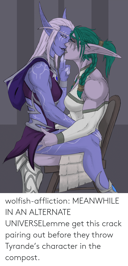 meanwhile: wolfish-affliction:  MEANWHILE IN AN ALTERNATE UNIVERSELemme get this crack pairing out before they throw Tyrande's character in the compost.