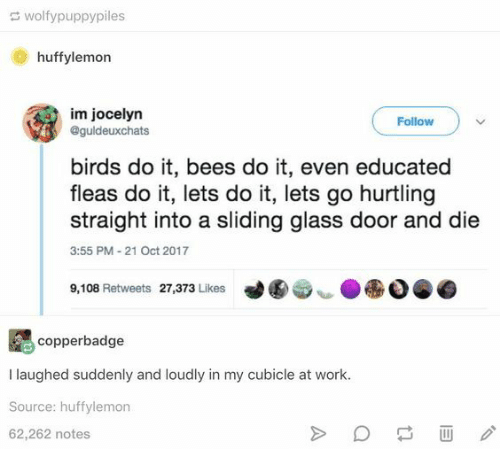 sliding: wolfypuppypiles  huffylemon  im jocelyn  @guldeuxchats  Follow  birds do it, bees do it, even educated  fleas do it, lets do it, lets go hurtling  straight into a sliding glass door and die  3:55 PM-21 Oct 2017  9,108 Retweets 27,373 Likes  copperbadge  I laughed suddenly and loudly in my cubicle at work.  Source: huffylemon  62,262 notes