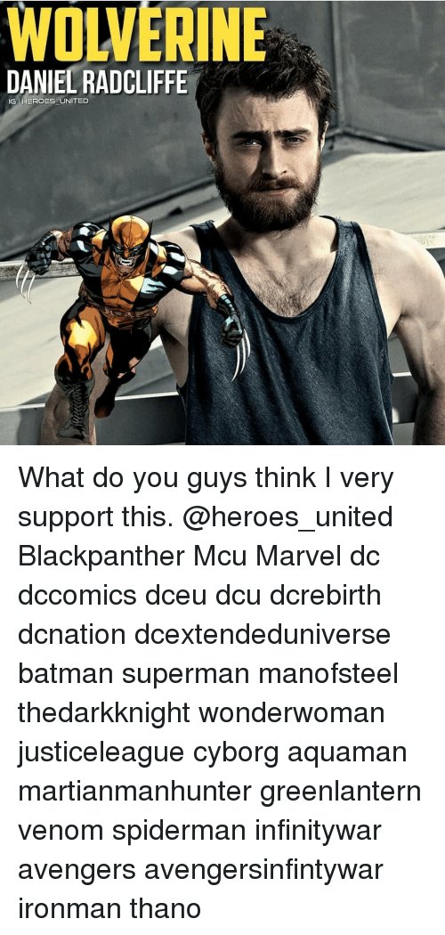 Batman, Daniel Radcliffe, and Memes: WOLVERINE  DANIEL RADCLIFFE  IG HEROES UNITED What do you guys think I very support this. @heroes_united Blackpanther Mcu Marvel dc dccomics dceu dcu dcrebirth dcnation dcextendeduniverse batman superman manofsteel thedarkknight wonderwoman justiceleague cyborg aquaman martianmanhunter greenlantern venom spiderman infinitywar avengers avengersinfintywar ironman thano